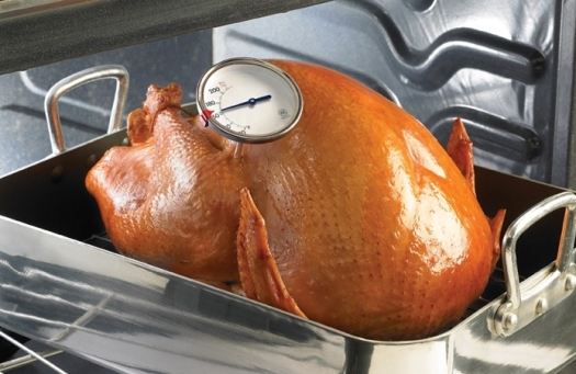 Turkey with Thermometer_USDA
